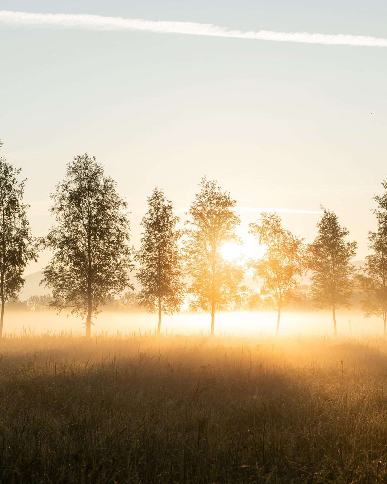 Sunrise in Deutschland - Stefan Schäfer Landschaftsfotograf